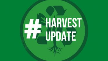 Harvest Update – Week of June 22, 2020